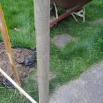 Stake Holding Pole