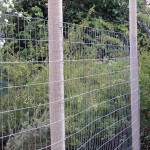 Angled Wire Fence
